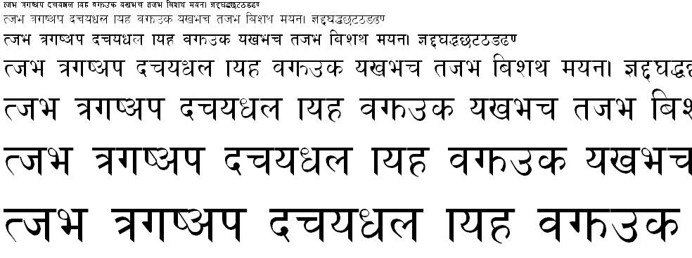 Cas Plain Hindi Font