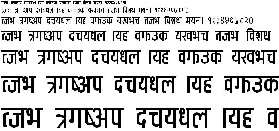 CV Anuradha Hindi Font