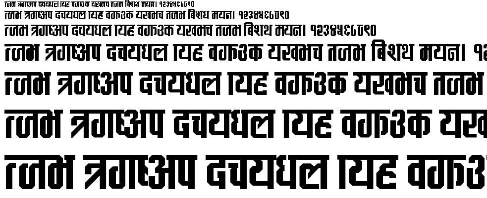 CV Maya Hindi Font
