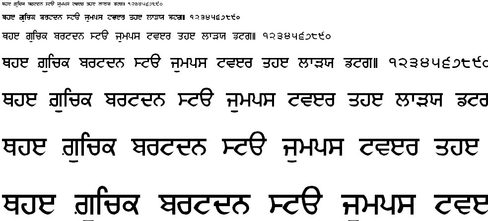 GurmukhiIIGS Hindi Font