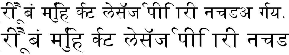 Naidunia Hindi Font