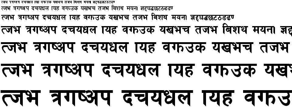Preeti Bold Hindi Font