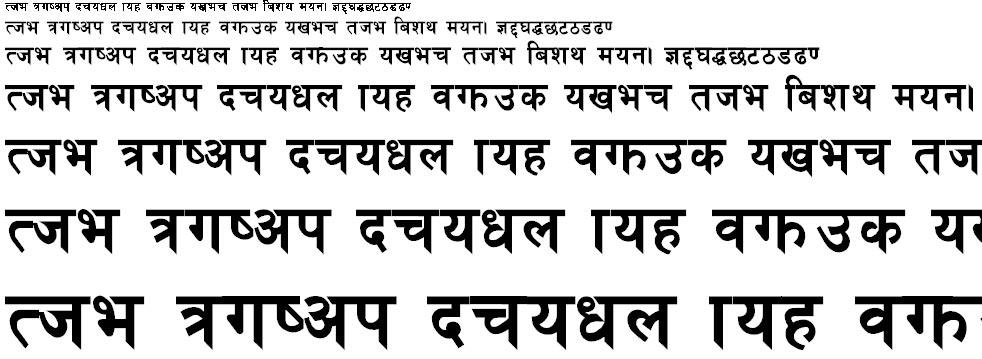 Preeti Heavy Hindi Font