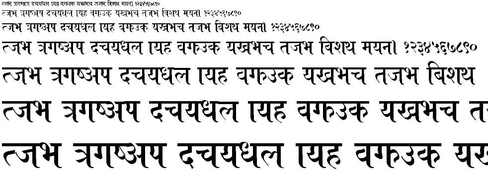 Roza Hindi Font